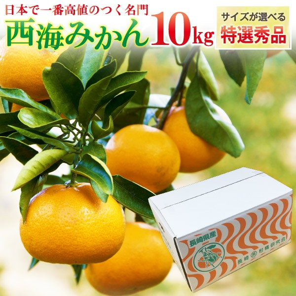 ギフト 西海みかん 長崎 早生 温州ミカン 秀品 10kg 送料無料 産直 甘い蜜柑 贈答用 サイズが選べる