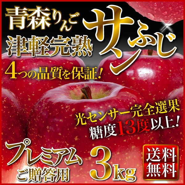 ギフト りんご 3kg 青森産 津軽 完熟 サンふじ お誕生日 内祝い フルーツ 果物 光センサー選果 送料無料