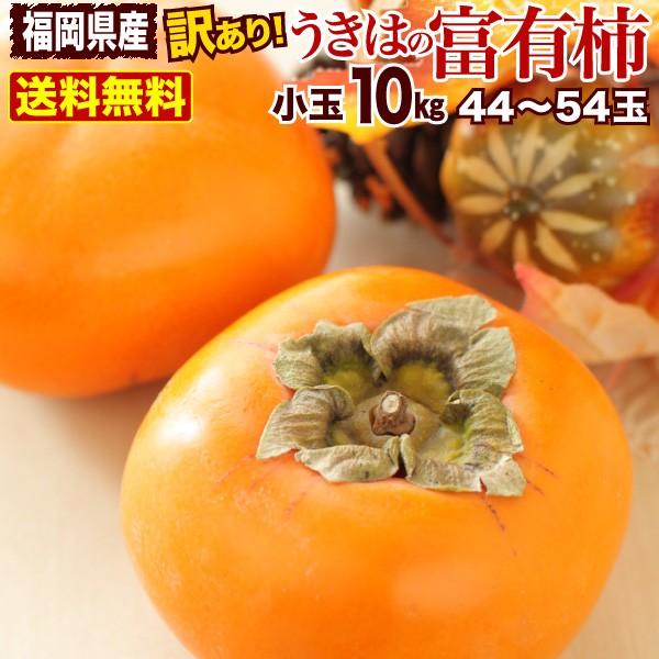 柿 訳あり 送料無料 10kg M〜S玉(指定不可) 44〜54玉前後 福岡県産 うきはの富有柿 ご家庭用