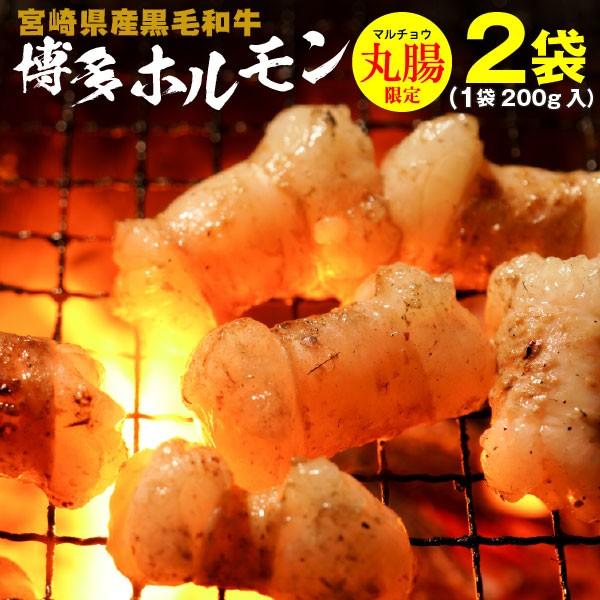 ホルモン 宮崎県産 黒毛和牛 博多ホルモン焼き 200g×2袋 丸腸 マルチョウ うま塩味 赤みそ味 クール