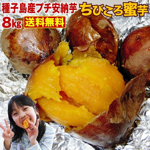 安納芋 訳あり 安納いも 種子島産 産地直送 プチ安納芋 (8kg x 1箱) ちびころ蜜芋8kg