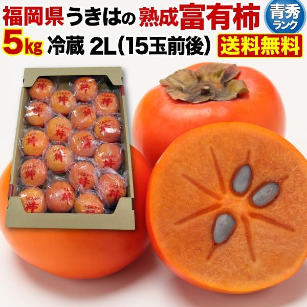 柿 かき 熟成富有柿 5kg 2Lサイズ 15玉前後 青秀 送料無料 福岡県産 冷蔵熟成 ギフト 内祝 贈り物