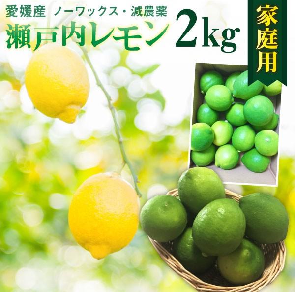 レモン 愛媛 瀬戸内レモンご家庭用 2kg(17玉前後) 産地直送 ノーワックス・減農薬