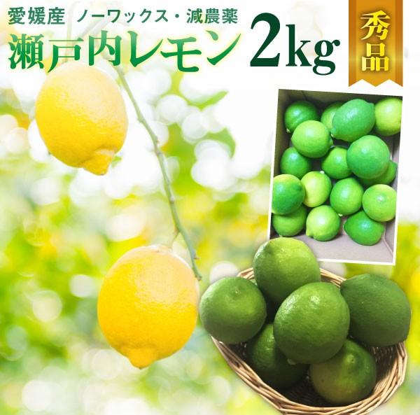 レモン 愛媛 瀬戸内レモン 2kg(17玉前後) 産地直送 ノーワックス・減農薬 秀品