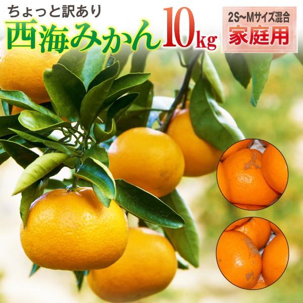 西海みかん 長崎 早生 温州ミカン 家庭用 10kg 送料無料 産直 甘い蜜柑 300g保証