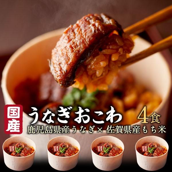 うなぎ おこわ ギフト 鰻 国産 高級 4食セット unagi プレゼント 送料無料 クール