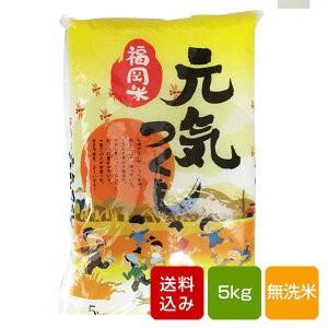 元気つくし 無洗米 5kg 一等米 令和元年産