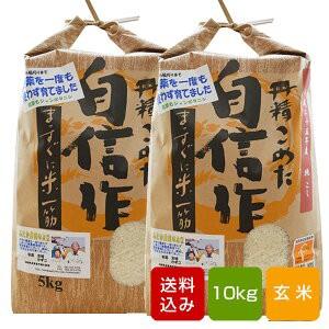 無農薬 玄米 コシヒカリ10kg 一等米 令和元年産