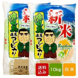 鹿児島コシヒカリ 無洗米10kg 一等米 令和元年産