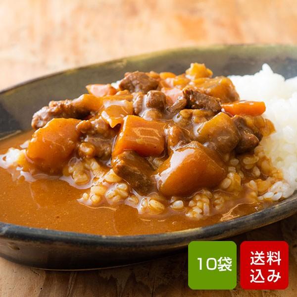 宮崎県産牛100% ビーフカレー 200g×10食 国産 レトルト カレー 常温保存