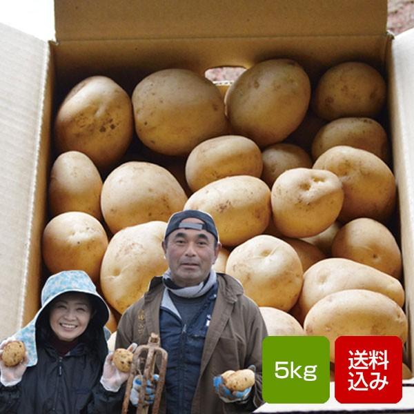 じゃがいも 5kg 出島 新ジャガイモ 長崎県島原産 父の日 お中元 送料無料