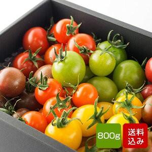 トマトの宝石箱 フルーツトマトの詰め合わせ 化粧箱入 お中元 お中元