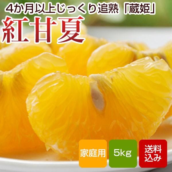紅甘夏 家庭用 5kg 甘夏みかん 大分県産 送料無料