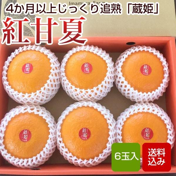 紅甘夏 贈答用 6玉入 化粧箱入 蔵姫 大分県産 送料無料