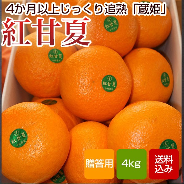 紅甘夏 贈答用 4kg入 蔵姫 大分県産 送料無料