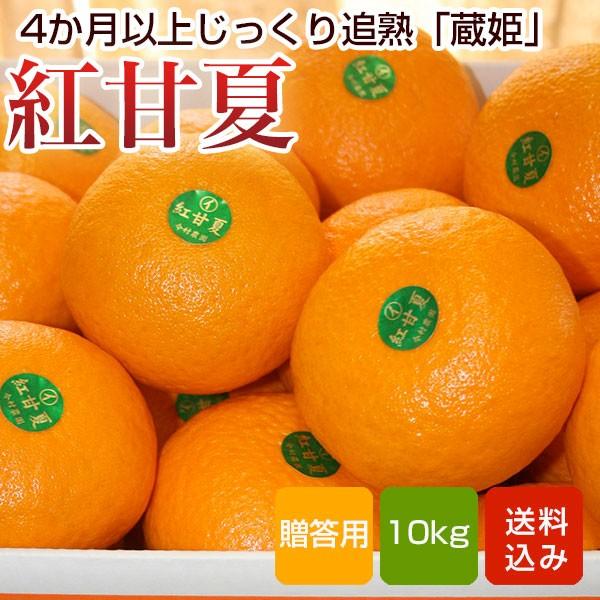 紅甘夏 贈答用 10kg入 蔵姫 大分県産 送料無料