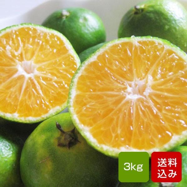 みかん 極早生みかん 3kg 特別栽培 ご家庭用 サイズ混合 熊本県産