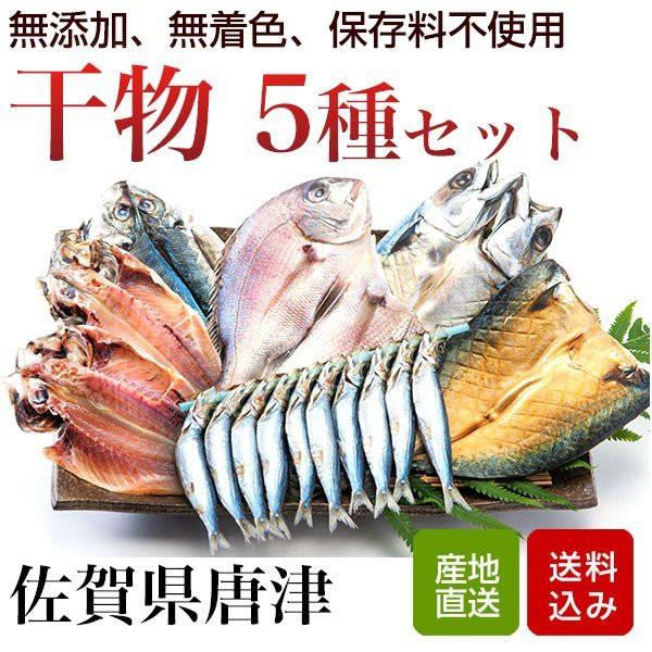 干物 5種類セット 無添加 無着色 お中元 ギフト佐賀県唐津 産地直送