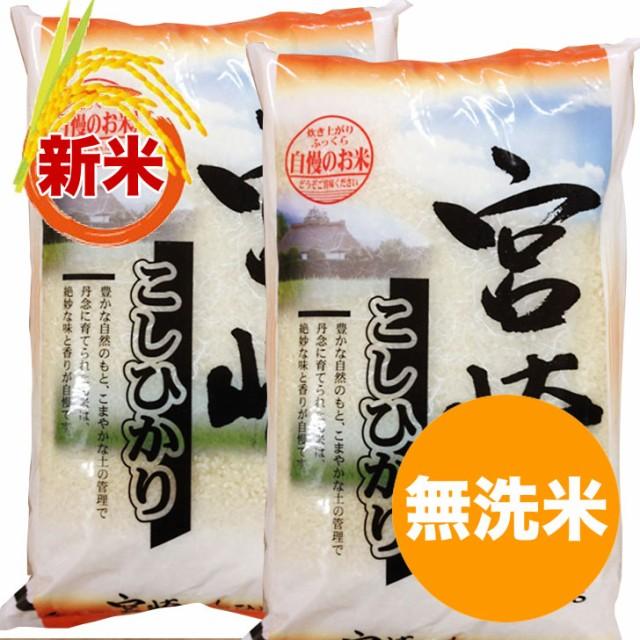 【新米 2020】宮崎コシヒカリ 無洗米 10kg 令和2年産 ご予約品