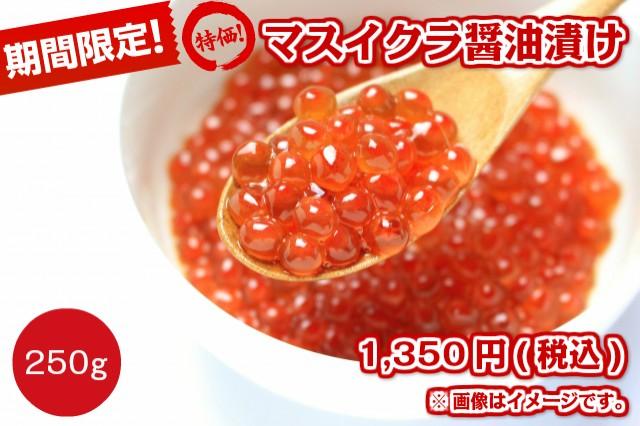 限定特価 マスイクラ醤油漬け 250g 赤字覚悟のセール品 【魚卵】 【特価品】 【セール】
