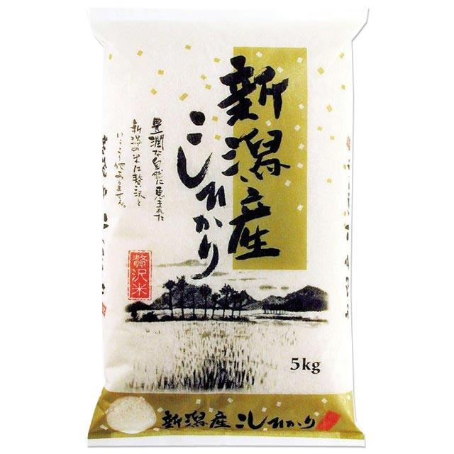 新潟 コシヒカリ 5kg 送料無料 新潟県 令和2年産(こしひかり/米/白米 5キロ)