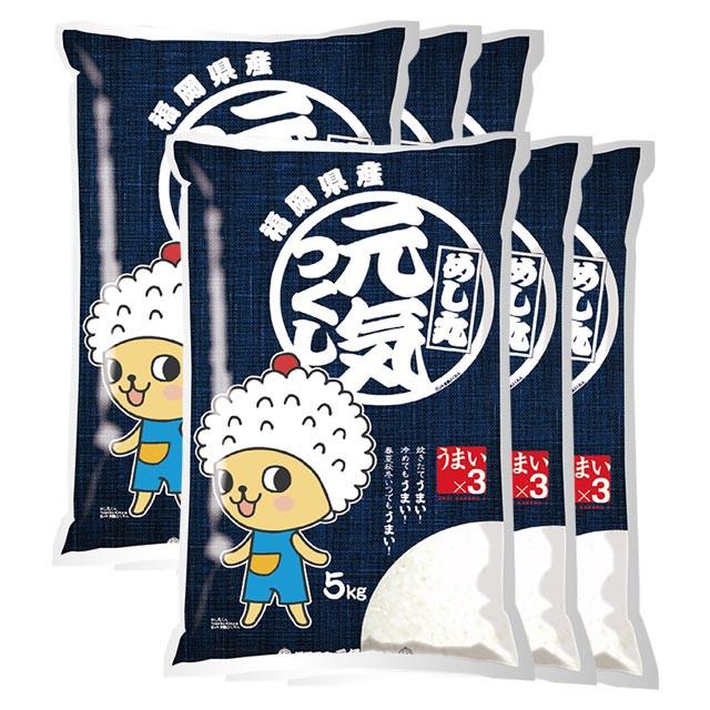 元気つくし 特別栽培米 30kg 送料無料 福岡県 令和元年産 (米/白米 5kg×6)