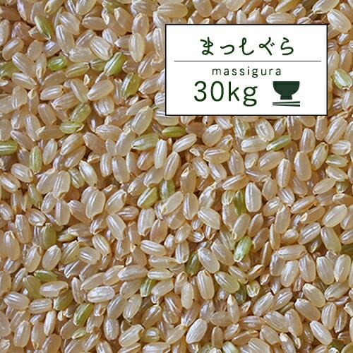 米 30kg 青森県産 1年産 まっしぐら 玄米30kg 【米30キロ】青森まっし 特A米/食味ランキング特A/人気