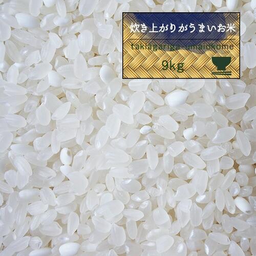米 10kg お米 精米 もち米入 炊き上がりがうまいお米 白米9kg オリジナル 噂のTKU モチさぱ 国産【白米9kg】