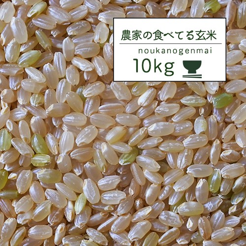 【令和元年産 農家の食べているおいしい玄米10kg】オリジナル 10キロ 玄米 人気 安い 米 10kg 送料無料 玄米食 調整済
