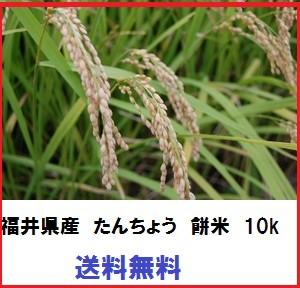減農薬 令和元年産 福井県産 もち米 たんちょうもち 10kg 認定農業者生産品 国内産 もち米 10kg モチ米 餅米 新米 タンチョウ餅 たんちよ