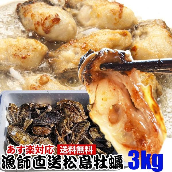 【牡蠣】【牡蠣 殻付き】15時まで即日発送3kg(目安35粒) 送料無料 宮城県産 無選別牡蠣 カキ 加熱用 BBQに 松島牡蠣屋