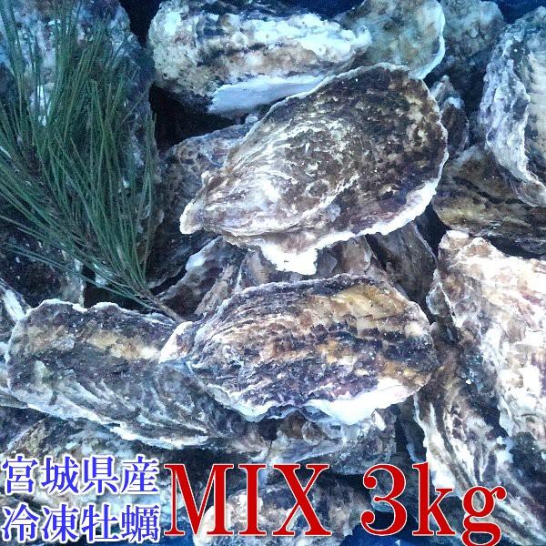 【店長暴走中!激安】【牡蠣】【牡蠣 殻付き】15時まで即日発送無選別MIX 3kg(約36粒)冷凍便送料無料! 宮城県産 殻付き牡蠣