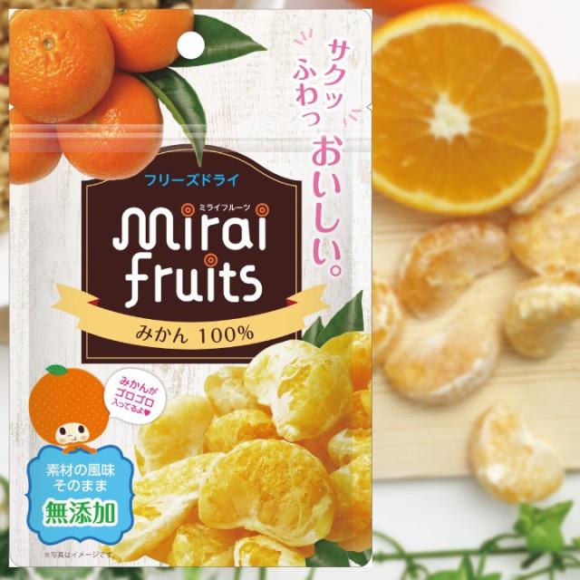 【mirai fruits(ミライフルーツ)未来果実[ みかん ] 13g】