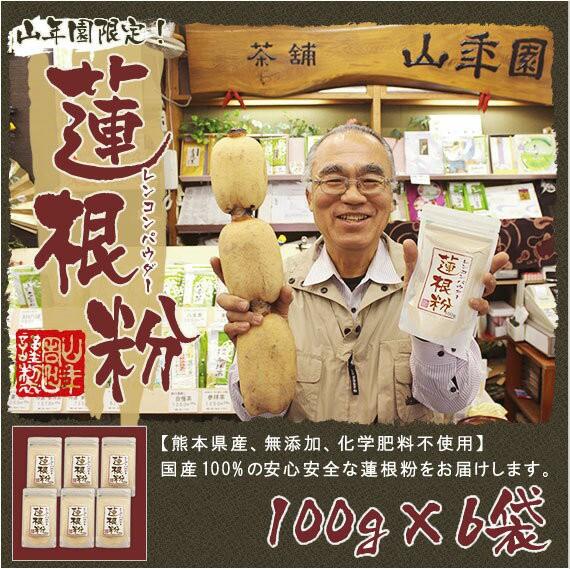 【国産100%】【無添加】れんこんパウダー 蓮根粉 100g×6袋セット 熊本県産 粉末 れんこん粉 レンコンパウダー 蓮根 国産 送料無料 お茶