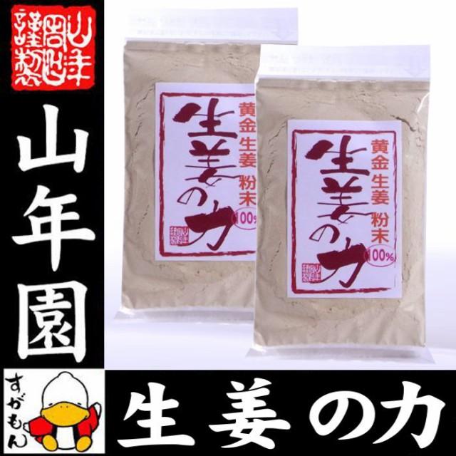 しょうが 粉末 国産 生姜の力 55g×2袋セット 黄金生姜100%の生姜粉末 しょうが 粉末 生姜力 ギフト 贈り物 健康 ダイエット お土産 送料