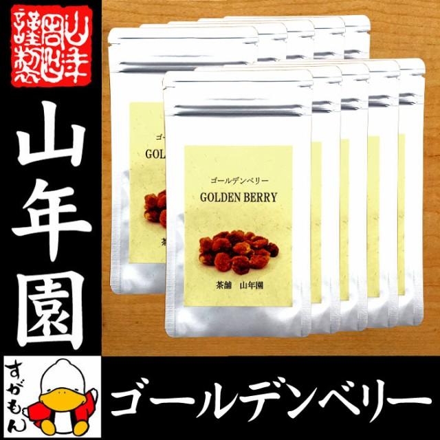 【無添加100%】ゴールデンベリー 100g×10袋セット ダイエット ほおずき インカベリー サプリ ドライフルーツ スープ スムージ 送料無料