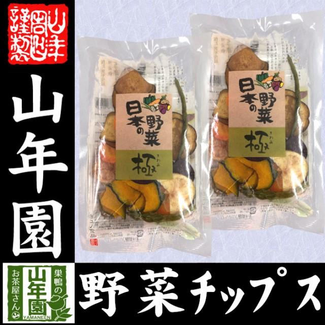 【国産100%】野菜チップス 日本の野菜・極 50g×2袋 送料無料 徳島鳴門産の塩と種子島産の砂糖、国産の野菜を使用して仕上げました 野菜