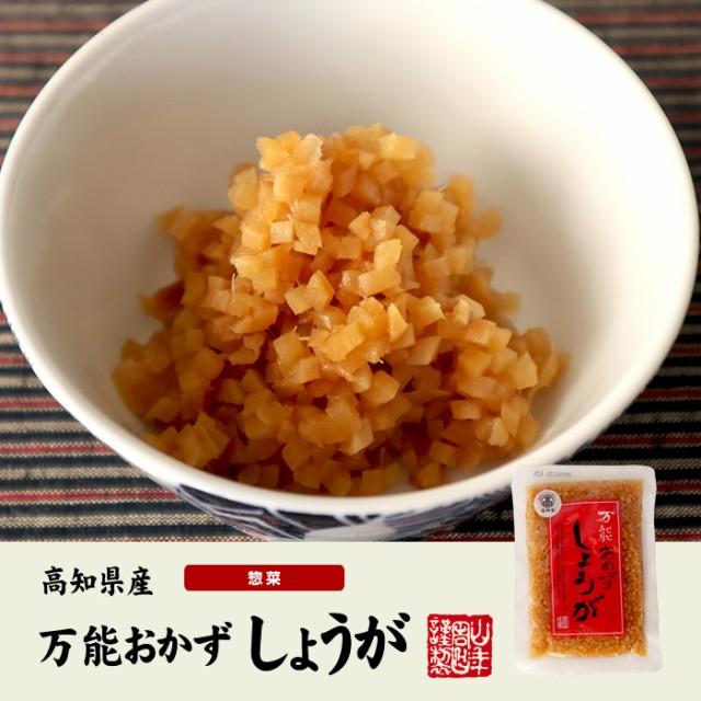 【国産】万能おかず生姜 130g×6袋セット 高知県産のしょうがしょうゆ漬(刻み)高知家 焼き魚の付け合わせ 豆腐の薬味 お好み焼きの具材