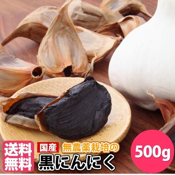 黒にんにく500g (50g×10袋) 国産(福岡県産) 無農薬にんにく使用 送料無料