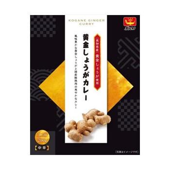レトルトカレー 高知県産黄金しょうがカレー 32230410 24セット