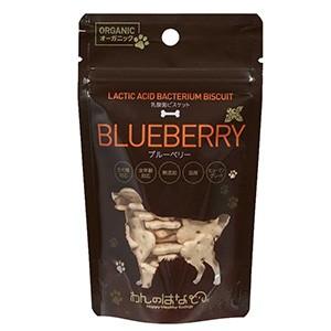 わんのはな 乳酸菌ビスケット ブルーベリー 30g (犬用おやつ)