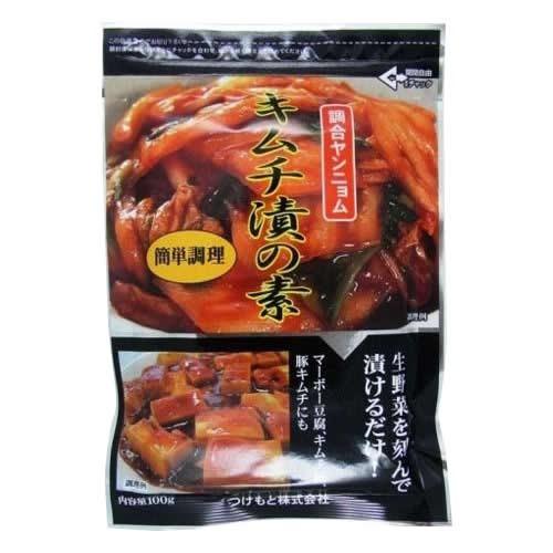 豚 野菜 おいしいキムチ漬の素 100g×10個 C