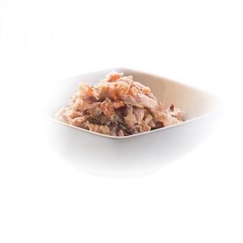ビタミン 健康 栄養豊富 無添加・無着色 成猫用キャットフード シシア ツナ&エビ 50g×6個パック×8パック タンパク質 食品 セット 素材