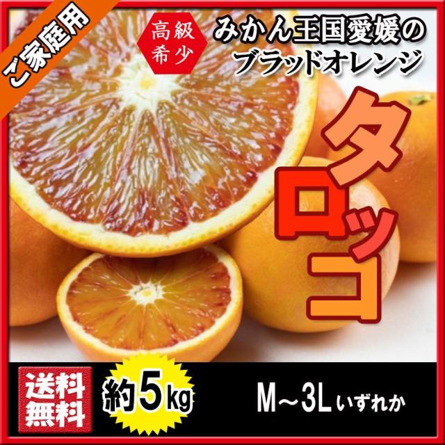 タロッコ ブラッドオレンジ 新品種 ご家庭用 訳あり 箱買い M〜3L 約5kg 送料無料