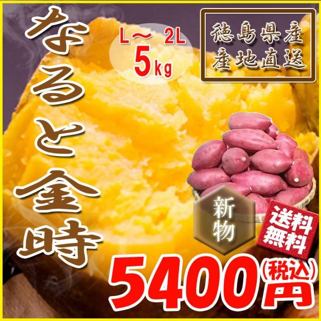 鳴門金時 徳島県産 なると金時 金時芋 さつまいも 5kg 新物 送料無料