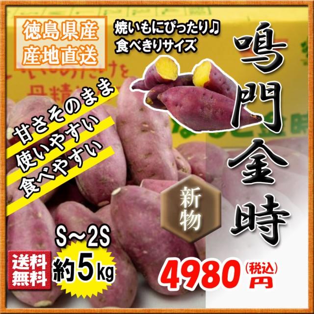 鳴門金時 徳島県産 S 2S 食べ切りサイズなると金時 金時芋 さつまいも 5kg 新物 送料無料