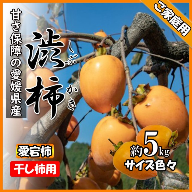 柿 かき 渋柿 干し柿用 愛宕柿 約5kg 愛媛県産 送料無料