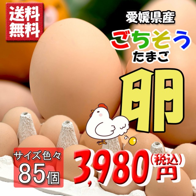 たまご ごちそう卵 たまご 卵 玉子 タマゴ 80個 + 5個破損補償 送料無料 まとめ買い 団体購入