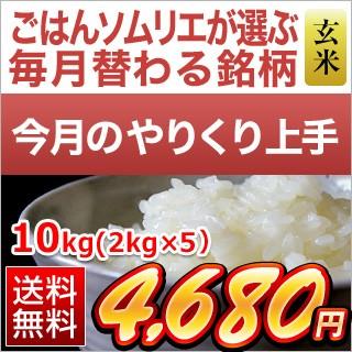 令和2年(2020年) <精選玄米> 茨城県産 ふくまる(10kg|2kg×5袋)【送料無料・令和2年度産】【8月のやりくり上手】【玄米】【即日出