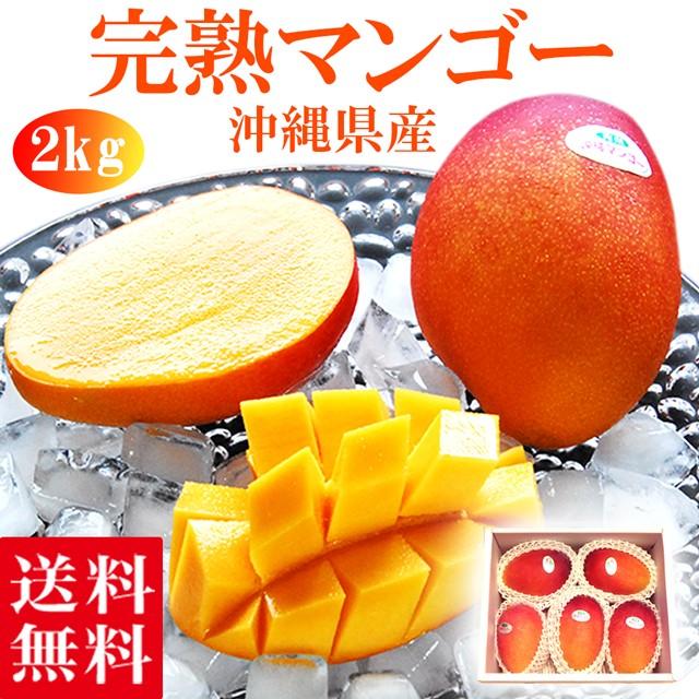 マンゴー 約2kg(4〜6玉) 送料無料 沖縄産 お中元 御中元 ギフト プレゼント 果物 くだもの フルーツ 果実 アップルマンゴー 青果 トロピ